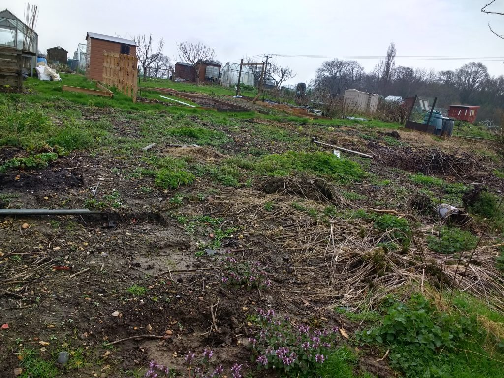 The Peachicks @ No17 Allotment Diaries #2 - You Chose a Plot... Now What? takes you through planning the priority jobs for the first days on your allotment!