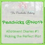 The Peachicks @No 17 Allotment Diaries #1 – Picking the Perfect Plot