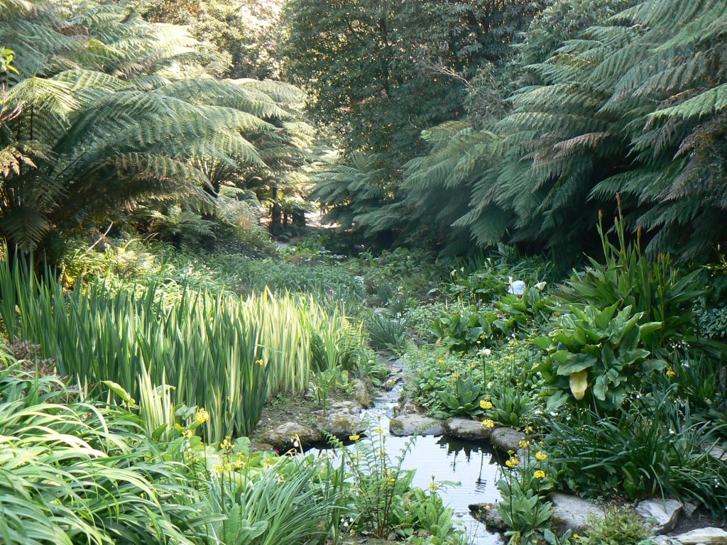 Trebah Garden is an exciting day out full of magical adventure! And here is The Peachicks' Must-See Guide to Trebah Garden & Eating in Trebah Kitchen Allergy Menu