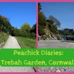 Peachick Diaries: The Peachicks' Must-See Guide to Trebah Garden & Kitchen