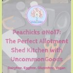 The Perfect Shed Kitchen Gadgets with UncommonGoods