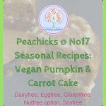 Seasonal Recipes: Vegan Pumpkin & Carrot Cake (Eggfree, Glutenfree)