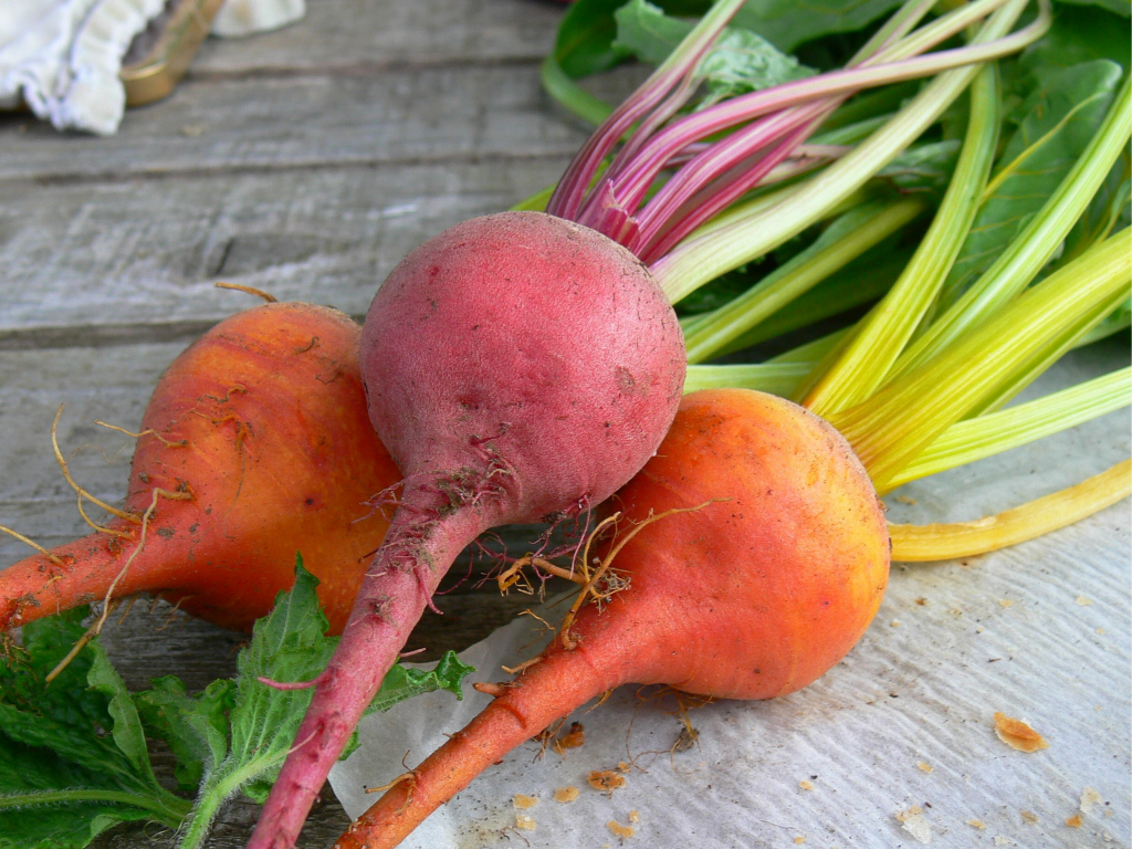 Beautiful chiogga & boltardy beets fresh from the allotment!